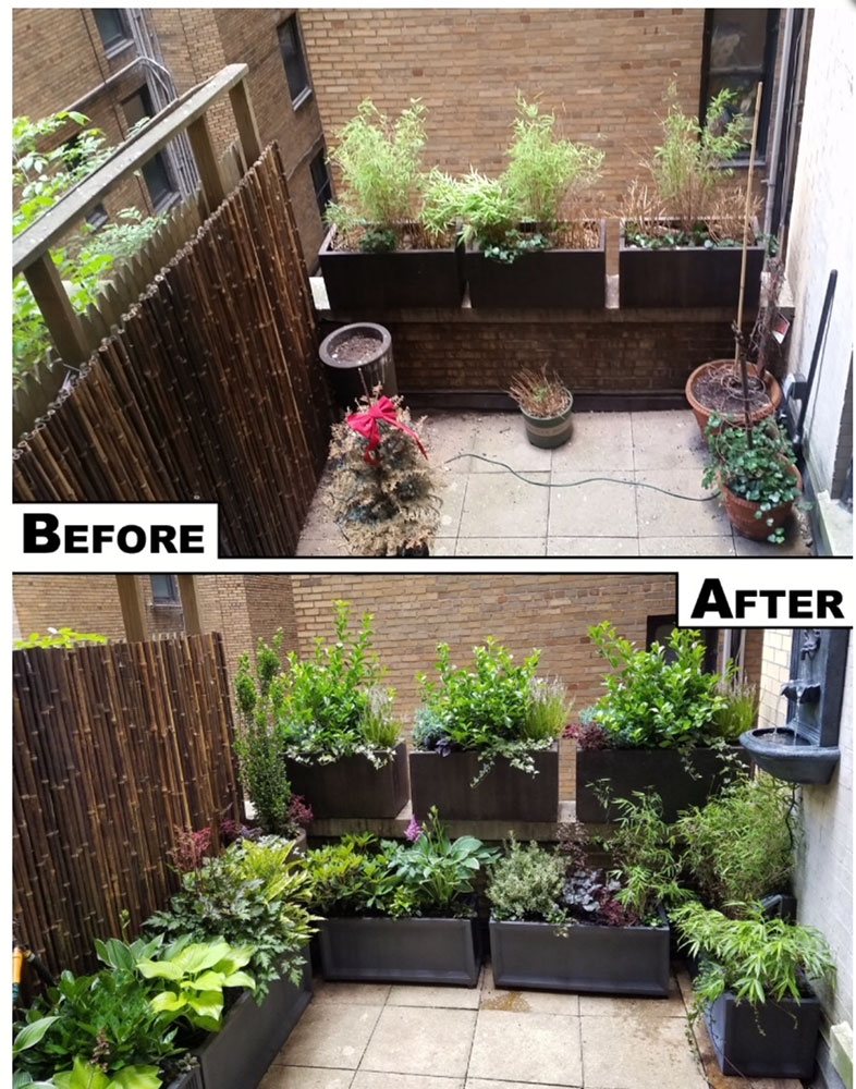 Before-after-sonia-terrace