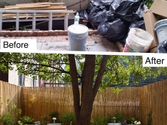 Before-after-arlington-pl
