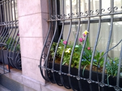 Windowbox-In-grill