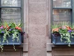 Windowbox-summer-55-e-76