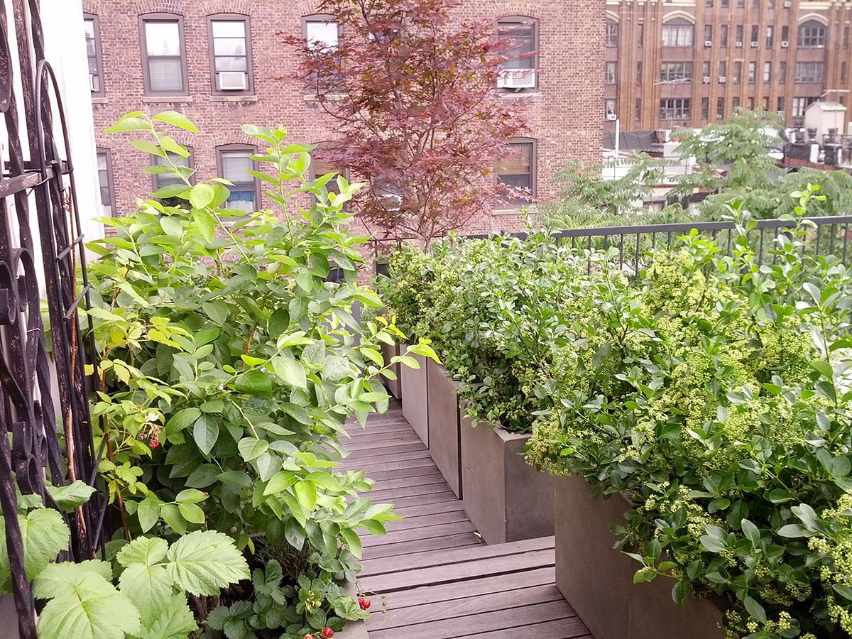 Terraces-Rooftops-12