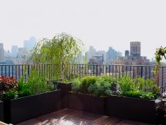 TerracesRooftops04.1