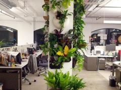 Office-Installation-1