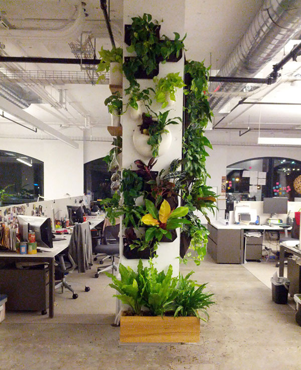 Office-Installation-800