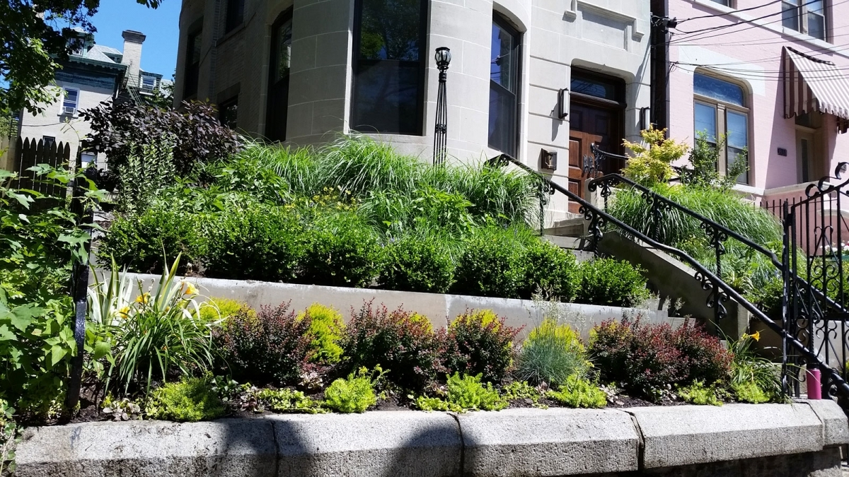Frontyard-hoboken
