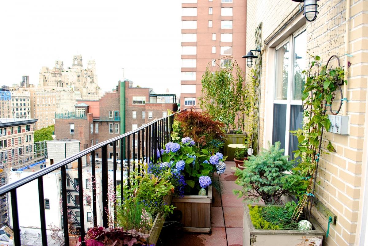 TerracesRooftops70