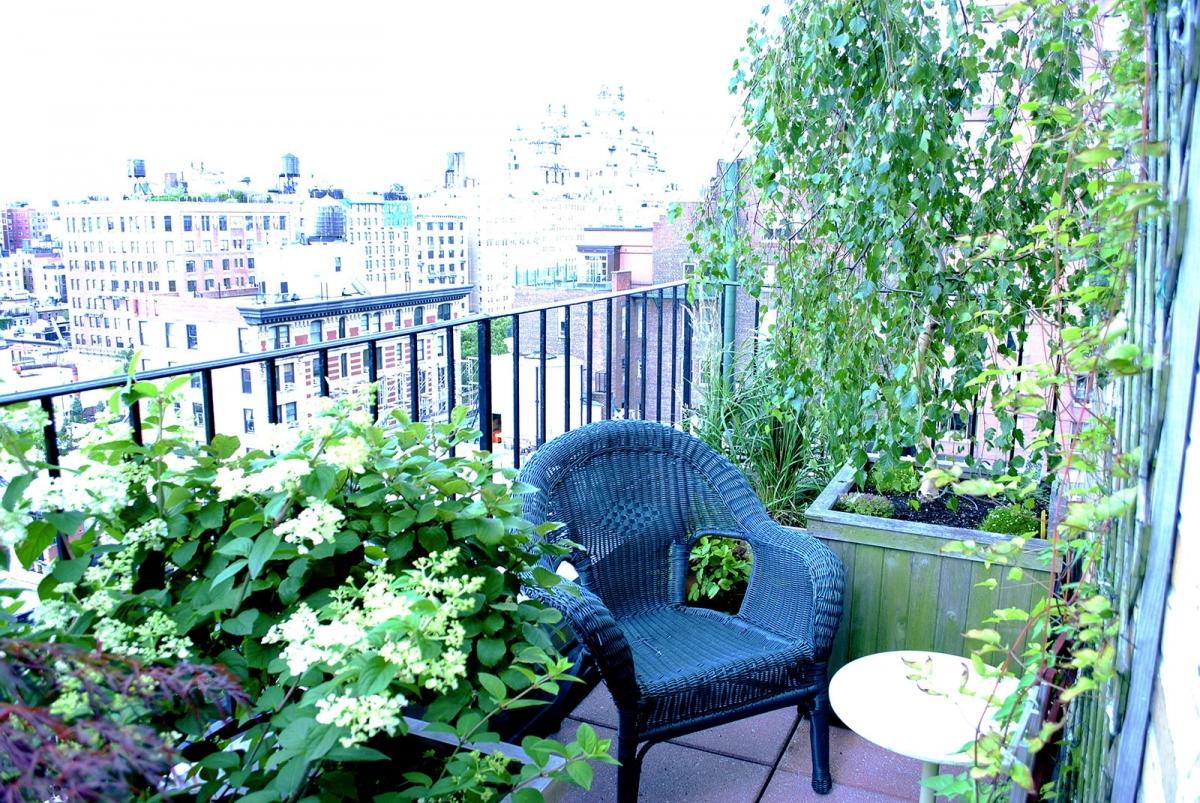 TerracesRooftops72