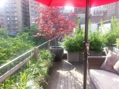 TerracesRooftops21