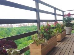 TerracesRooftops80B